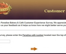 Paradise Bakery & Café Customer Experience Survey