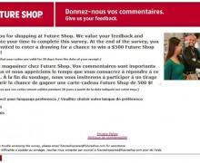 Future Shop Survey