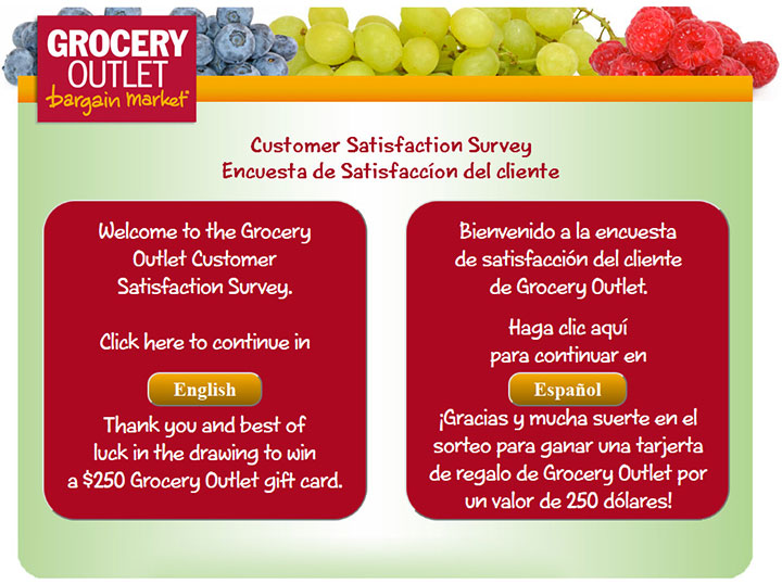 Grocery-Outlet-Customer-Satisfaction-Survey