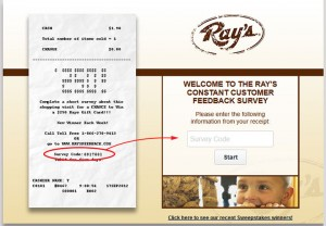 Ray's-Constant-Customer-Feedback-Survey